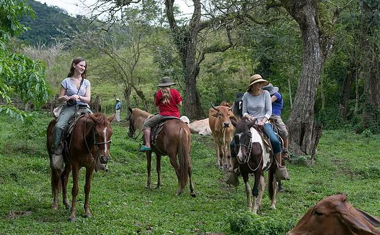 Barcelona   Passeio a Cavalo em Montserrat